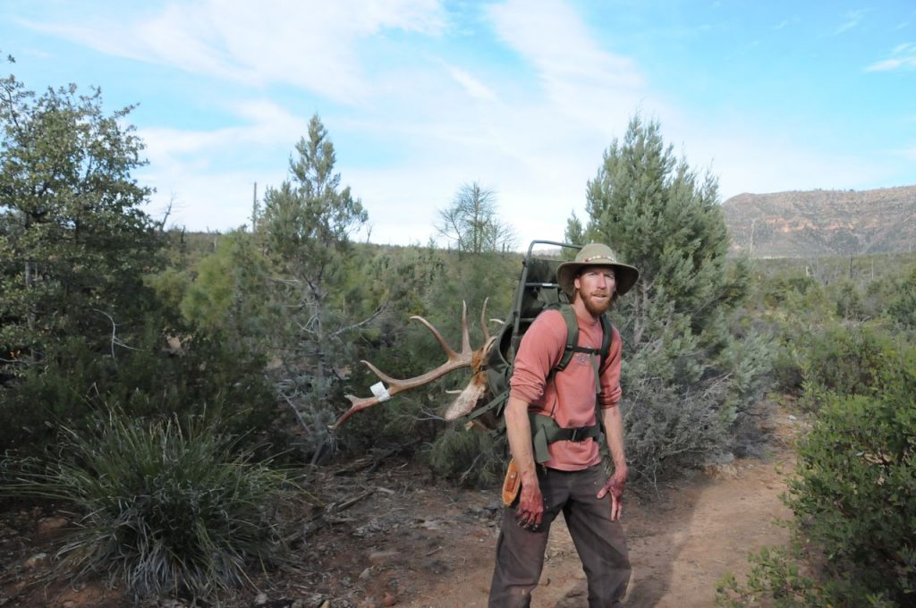 Arizona Elk hunting Guide