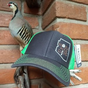 Arizona Quail hat clothing apparel