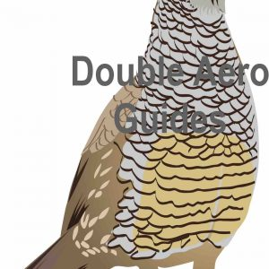 Scaled quail sticker